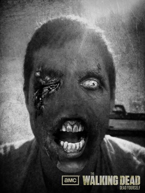Meet Zombie Steve
