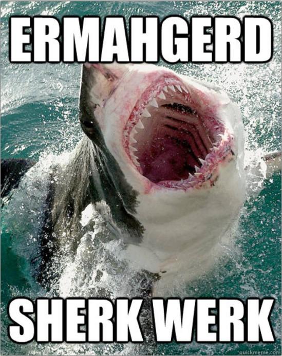 sharkweek10