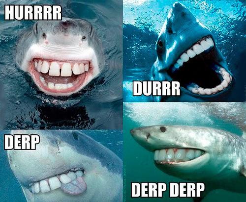 Sharkweek2