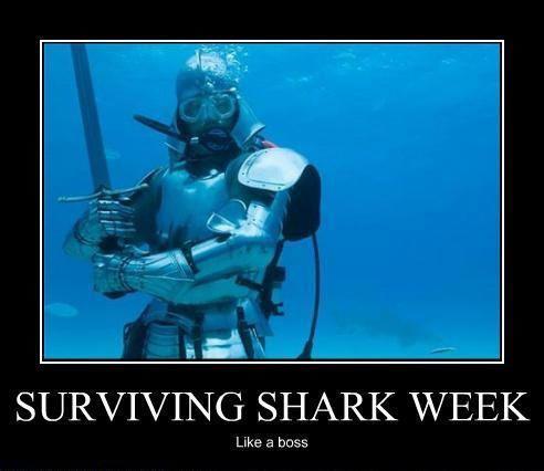 Sharkweek6