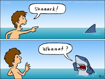 sharkweek9